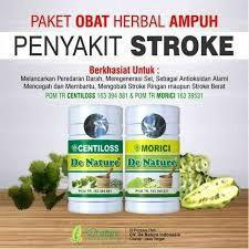 Di jual obat herbal stroke