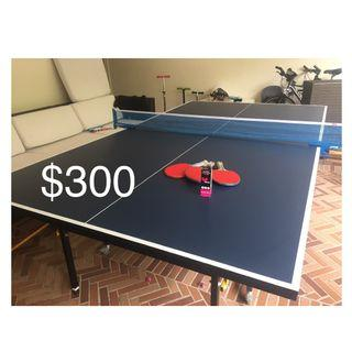 🚚 Table Tennis table