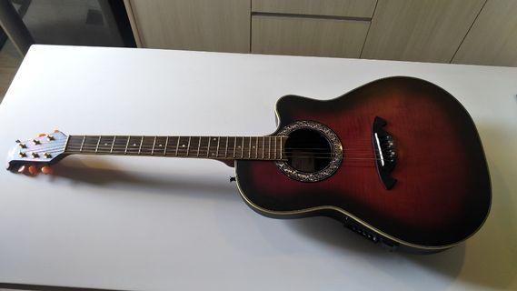 Fina acoustic/electric guitar