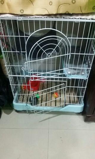 🚚 貓籠(大)