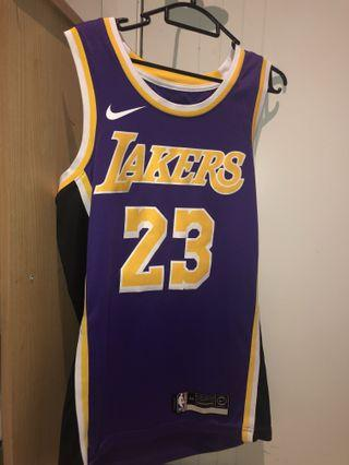 Brand new Lebron lakers jersey