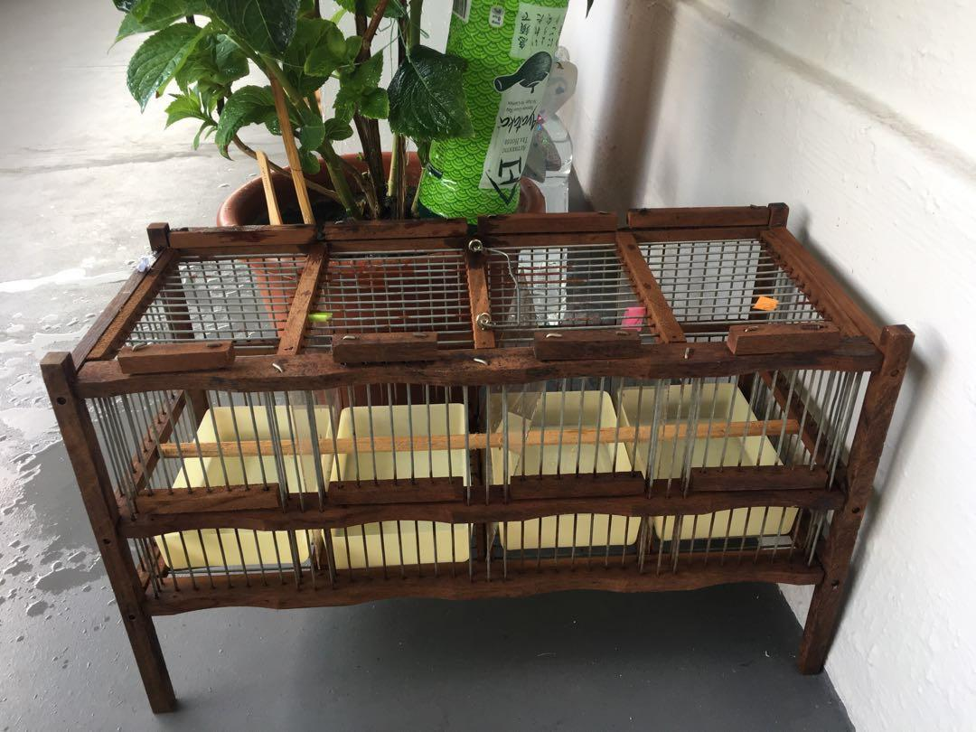 4 individual partitioned wooden bird cage