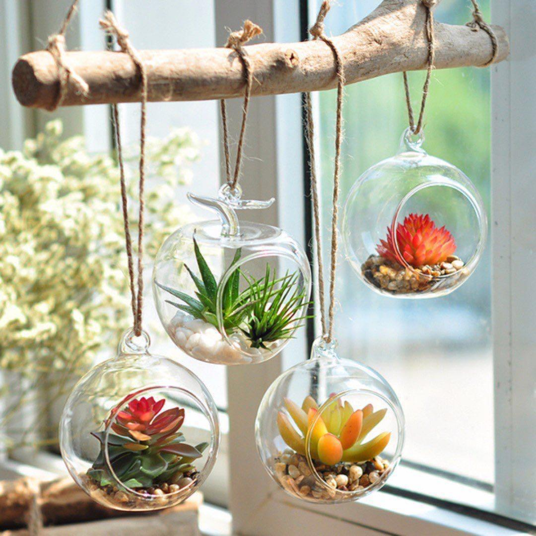 Artificial Succulent Plants Hanging Glass Terrarium Succulent Plants For Office Gardening On Carousell