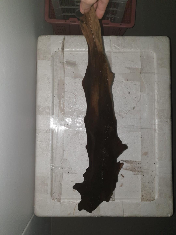 Unique driftwood