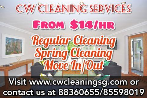 Professional House Cleaning