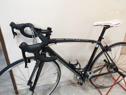 Specialized Allez Comp Size 54 Roadbike bicycle