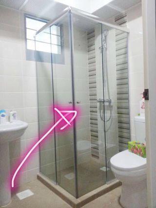 Corner entry shower screen