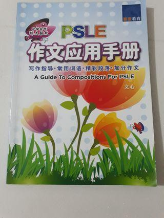 PSLE chinese composition guide