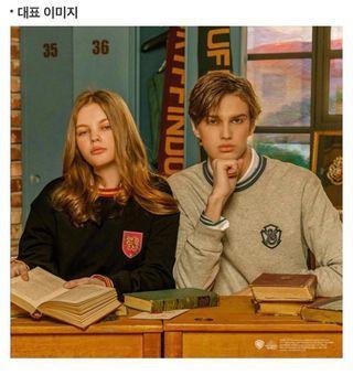 SPAO x Harry Potter 哈利波特 衛衣 sweatshirt Slytherin 斯萊哲林
