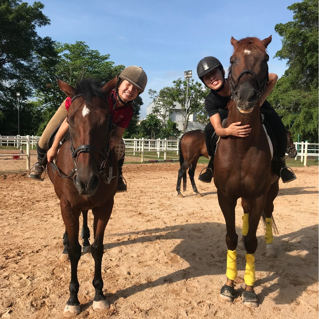 June Holiday Horse Riding Experience