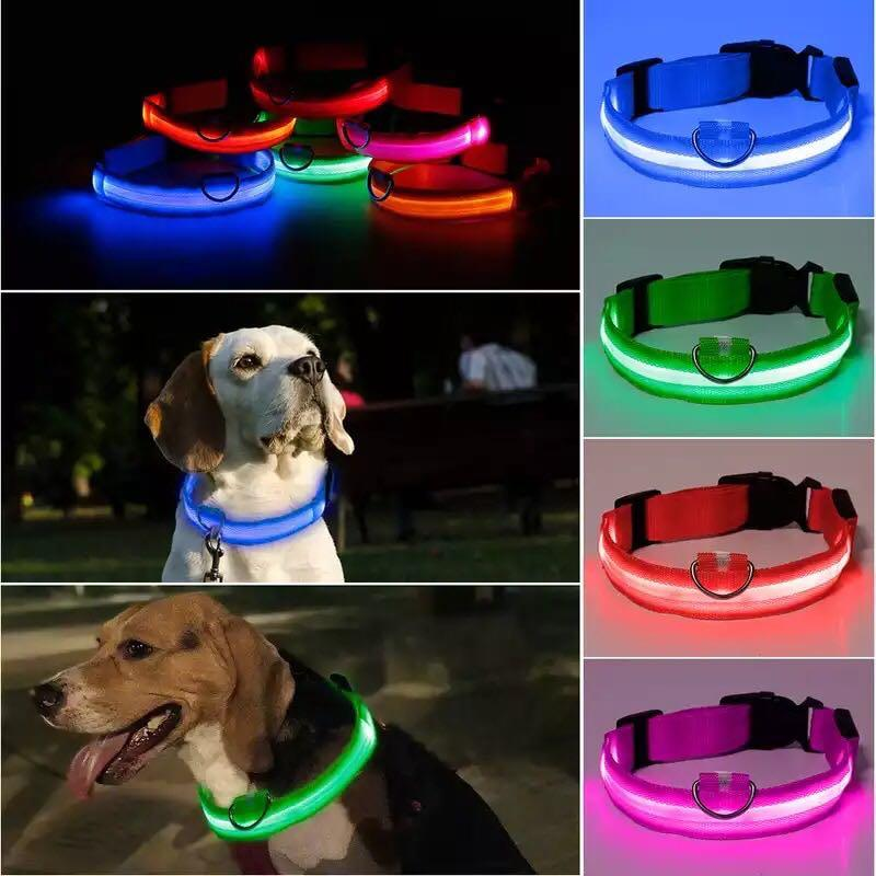 PET LUMINATE Led Night Collar