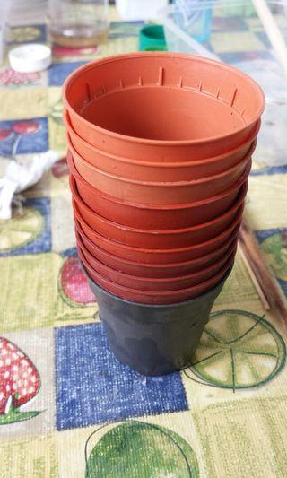 10pcs 5.5cm mini small  flower plant nursery pot brown black used for cactus succulent