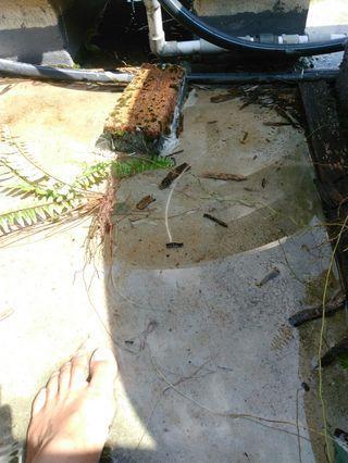 Mohd Zikry tukang paip dan renovation world area Ampang Cheras: 0172883209