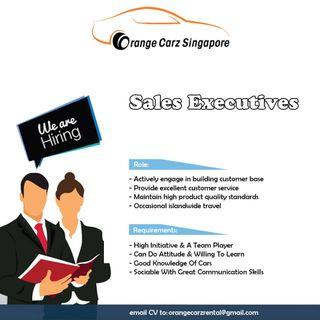 Car Sales Executive Job Vacancy