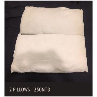 枕頭 Pillows 2x