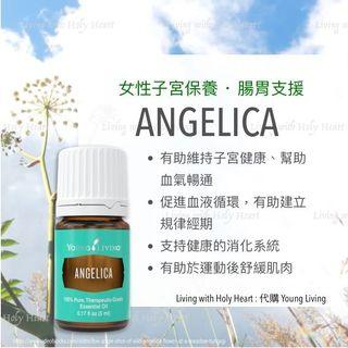 Angelica 歐白芷精油🌸 [young living海外代購]
