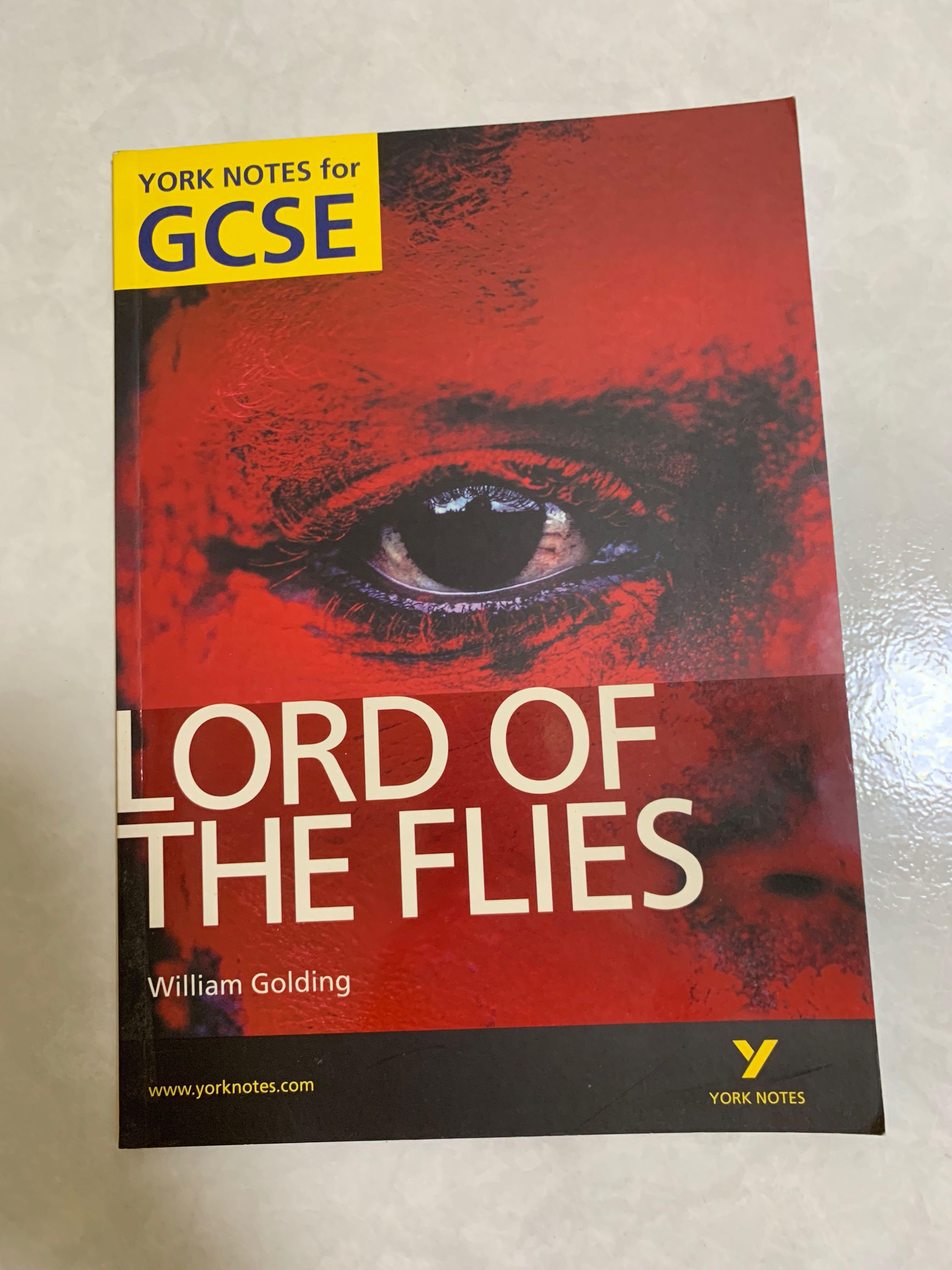 Lord of the Flies York Notes Guidebook