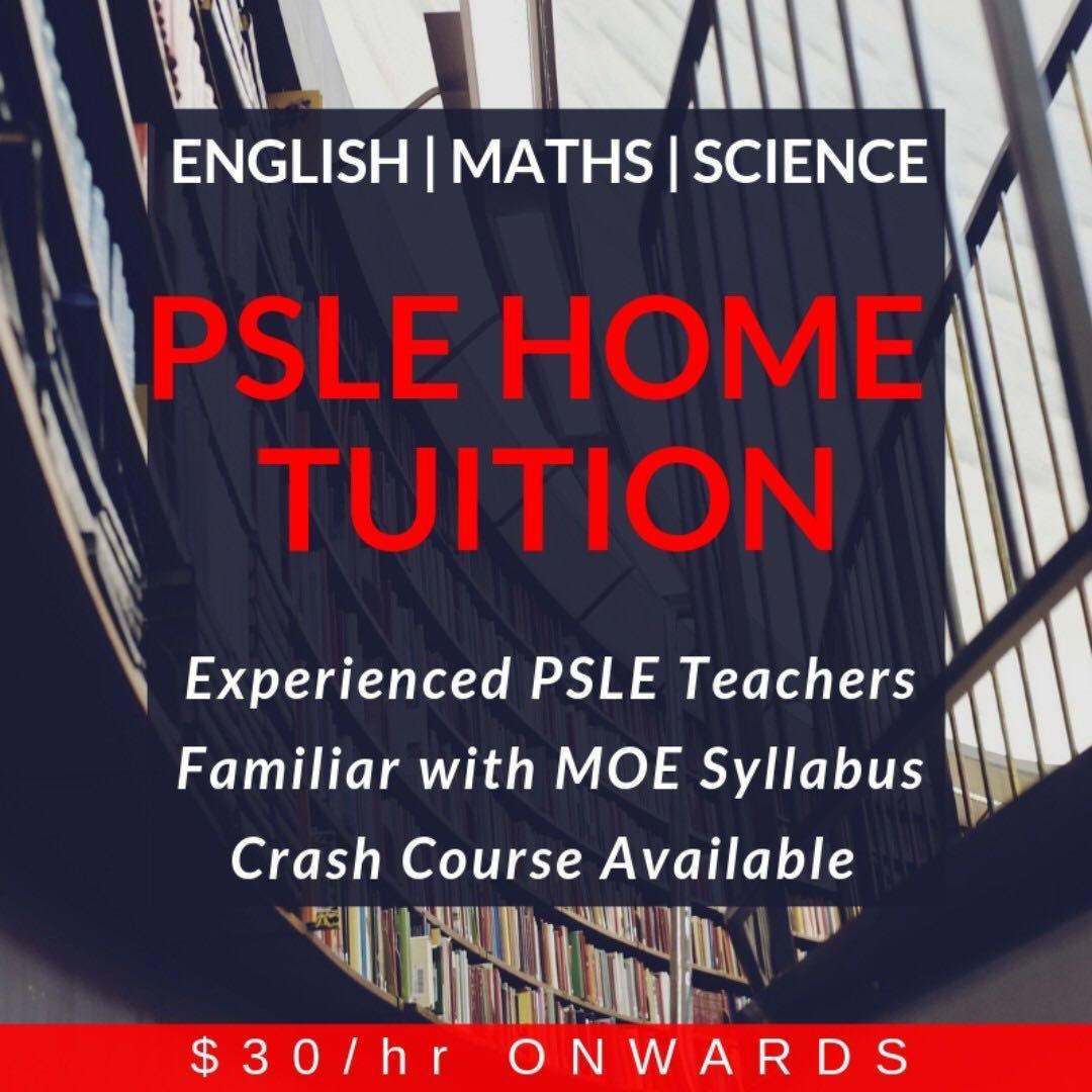 PSLE  Home Tutors | Home Tuition Primary School Level | 1 to 1 English Maths Mathematics Science Higher Chinese Tutor | Looking for PSLE Tuition Teacher | Full Time Private Tutor | Experienced Private Tutor | Home Tutor Needed | Private Tutor for Primary