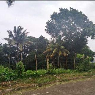 Lot for sale in Tagaytay Overlooking 32k sqm