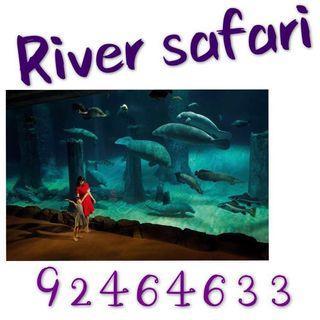 River safari River safari River safari River safari River safari River safari River safari