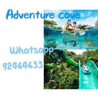 Adventure cove Adventure cove Adventure cove Adventure cove Adventure cove Adventure cove Adventure cove Adventure cove