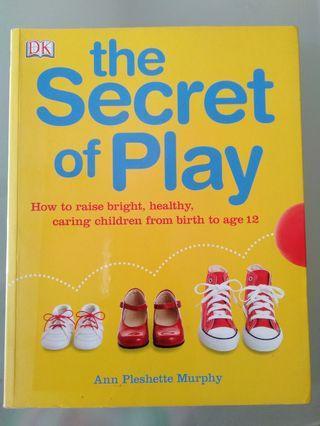 🚚 DK the Secret of Play