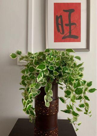 Wooden Pot with artificial plant