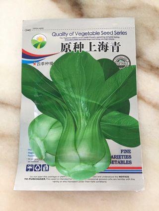 Vegetables seeds - Shanghai green 原种上海青