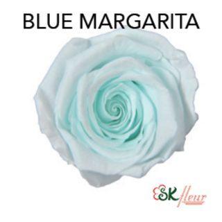 NEW COLOURS 2019 - BLUE MARGARITA, LAVENDER FIZZ, SPUMONI PINK