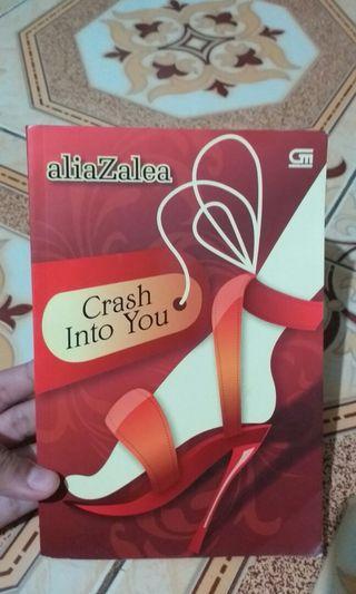 Novel Crash Into You - Metropop