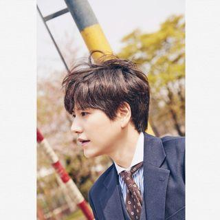 SUPER JUNIOR KYUHYUN - THE DAY WE MEET AGAIN FREE POSTAGE & POSTER