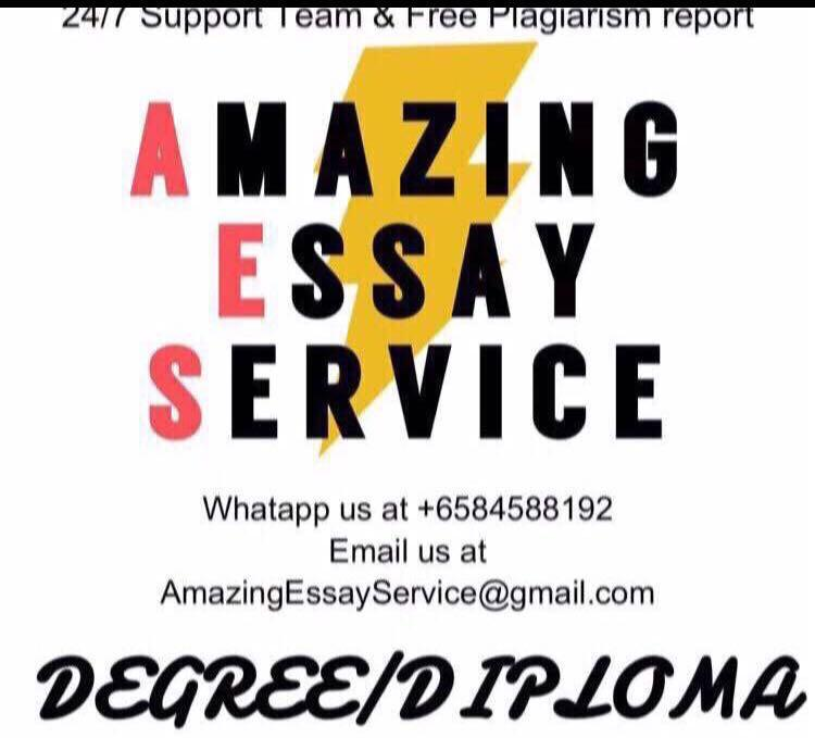 Diploma Degree Assignment Essay