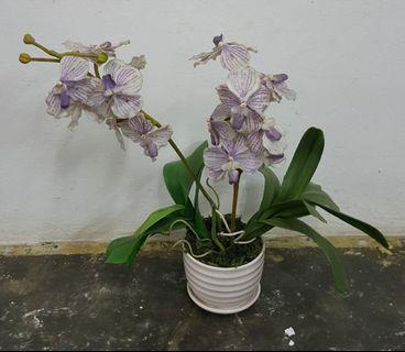 🚚 Artificial Plant