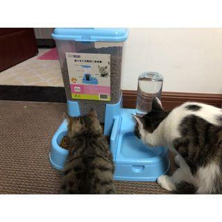 【暉長豪商行】寵物自動餵食器 雙碗 粉紅色 自動餵食器 自動飲水 寵物碗 狗碗 貓碗 狗狗用品 貓咪用品 寵物用品