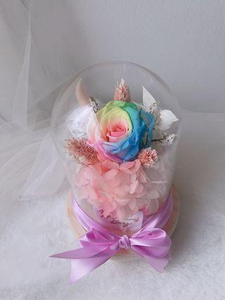 Flower bell jar rainbow rose