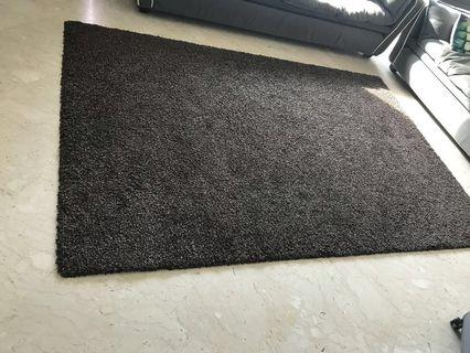 FAST DEAL $90 Dark brown luxurious carpet rug