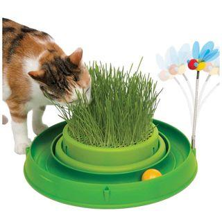 Catit 3-in-1 Circuit Ball Toy with Cat Grass, Scratch pad