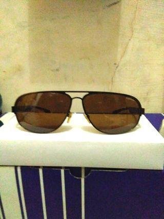 Kacamata Carrera Coklat