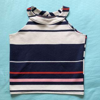 Pastel Stripe Sleeveless Crop Top