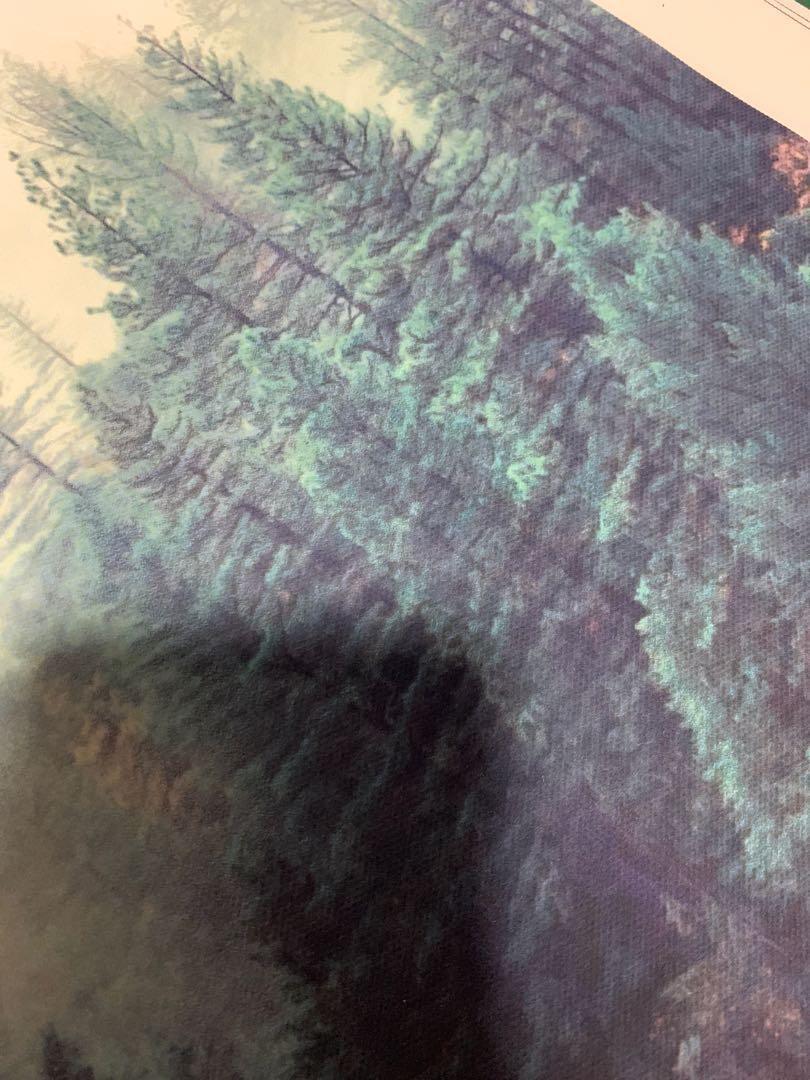 Wall Art | Forest Potrait