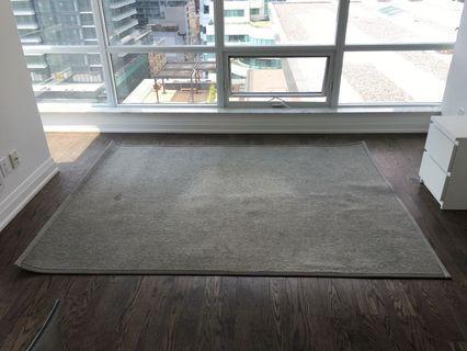 Rug | 6'x8' | Silver colour | Synthetic Sisal | Plus non-slip rug pad