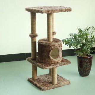 Pawise Kitty Hide N Seek Cat Post