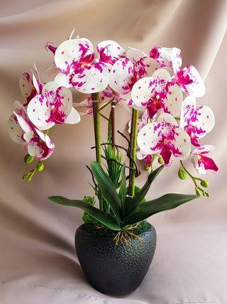 Gubahan Orkid Latex Premium