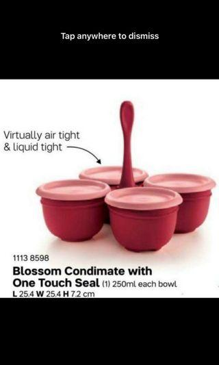Authentic Tupperware One Touch condimate Set