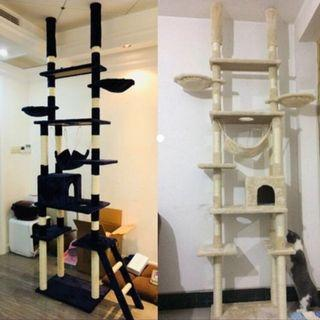 (New!) double ceiling cat tree house
