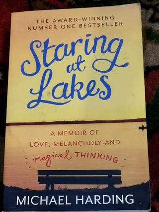Staring at Lakes by Michael Harding