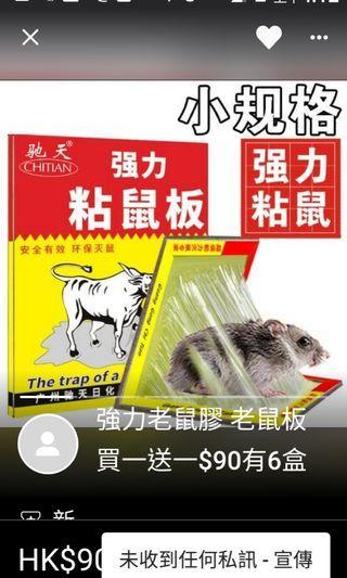 強力老鼠膠 老鼠板 買一送一$99有6盒+送6盒