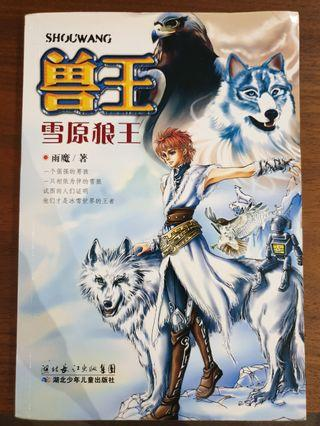 🚚 Chinese story book - teens
