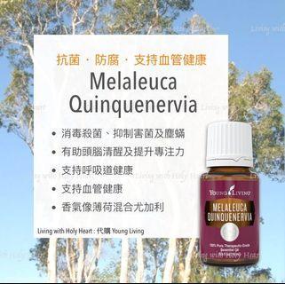 Melaleuca Quinquenervia 綠花百千層精油🌿 [young living海外代購]