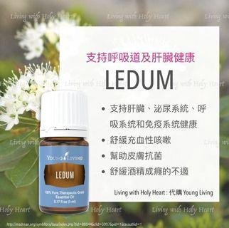 Ledum 杜香精油🌲 [young living海外代購]